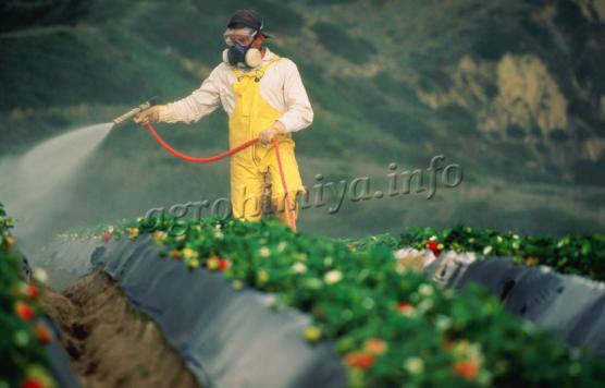 pesticidu3