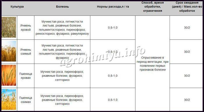 Применение Фунгицид Тилт Турбо-575-ЕС
