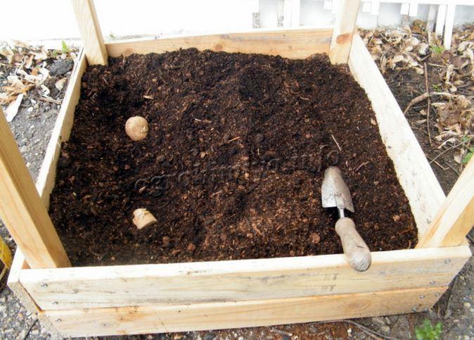 Приготовление компоста с торфом