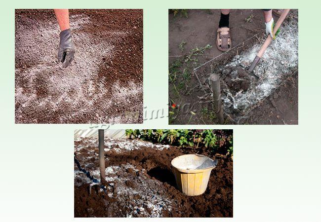 Как вносить известь в почву?