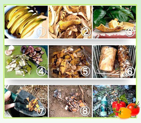 Банановые подкормки для перца и томатов