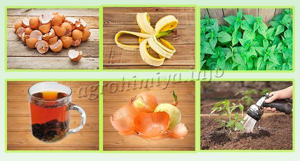 Ингредиенты для полива перца и томатов