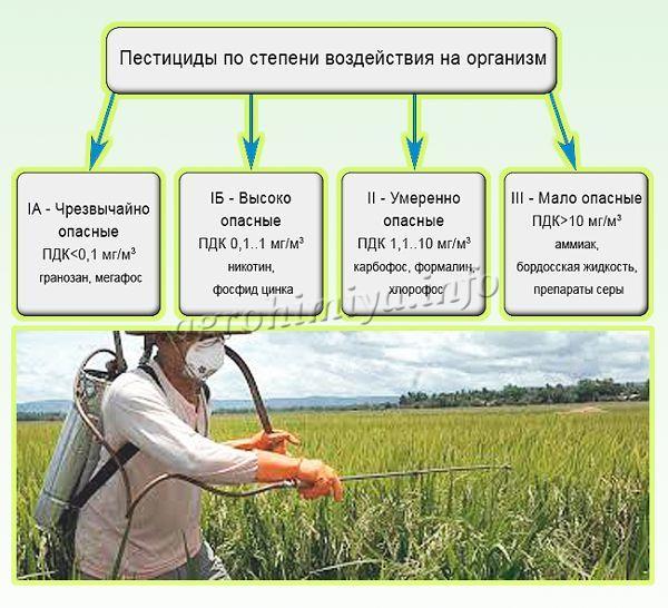 Пестициды по степени воздействия