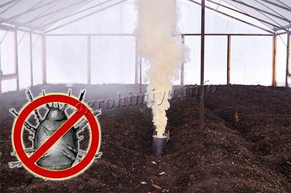 Осенью, чтобы уничтожить возможных «жителей» теплицы, необходимо использовать простую дымовую шашку