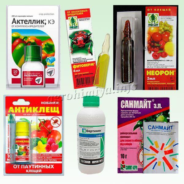 Специализированные препараты от паутинного клеща