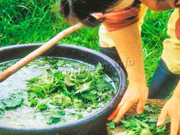 Жидкое удобрения для своего участка можно приготовить своими руками