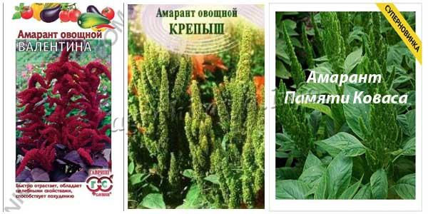 Амарант овощной