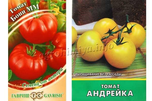 Фото семян томатов Бони М и Андрейка