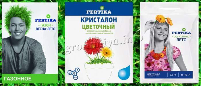 Фертика газонное, цветочное