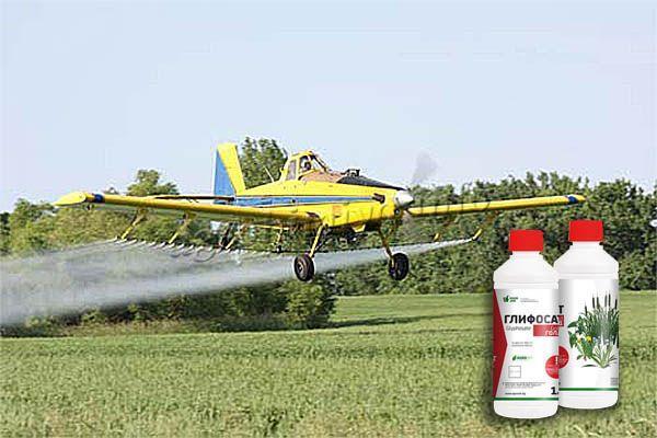 Большую плантацию, поле или сад проще всего обрабатывать авиаопрыскиванием