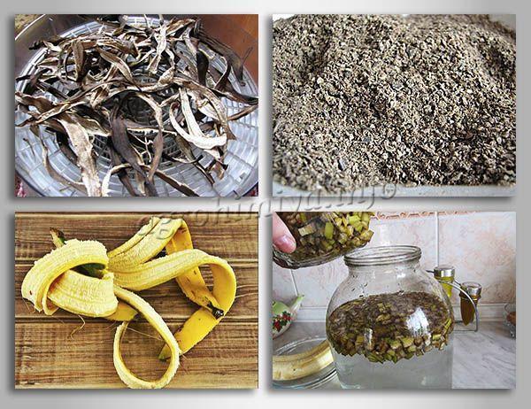Как сделать удобрение из кожуры банана