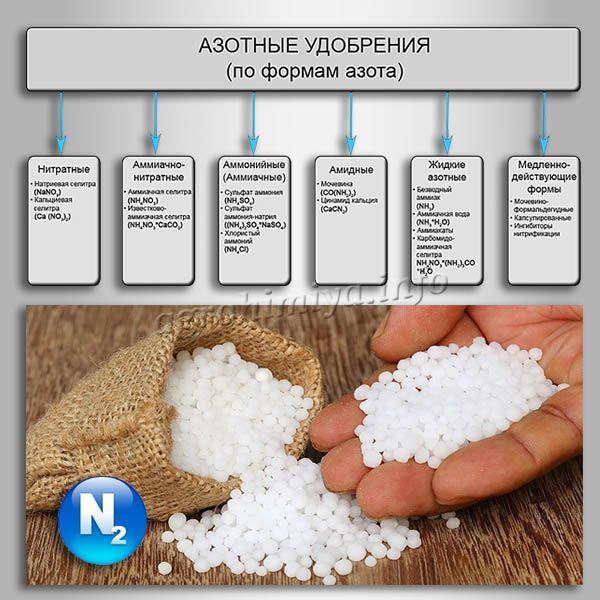 Классификация Азотных удобрений по формам азота