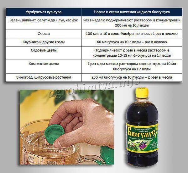 Норма и схема внесения жидкого Биогумуса