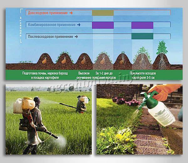 Виды применения гербицидов