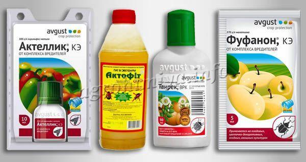 Химикаты для обработки огурцов от тли
