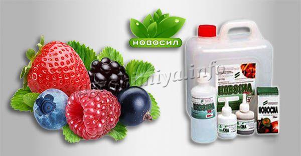 Инструкция по применению Новосила для ягодных культур