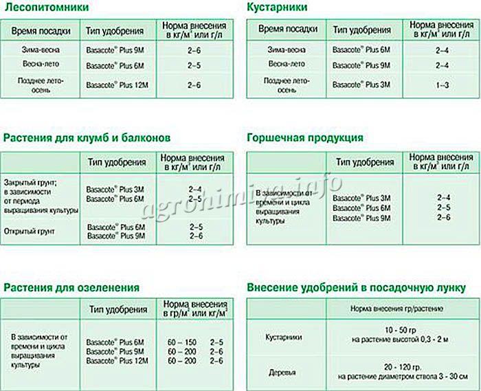 Общие рекомендации по применению удобрения Базакот