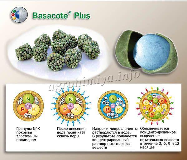 Принцип действия удобрения Basacote