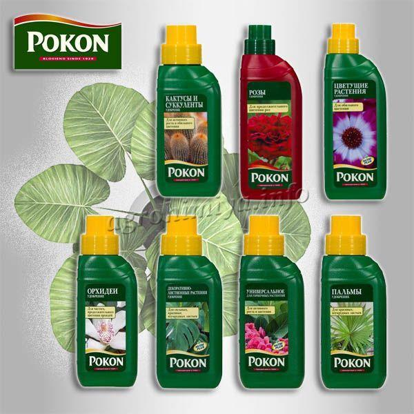 Удобрение Покон (Pokon) жидкий концентрат