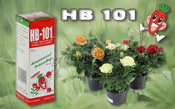 Для домашних цветов на литр воды берется 1-2 капли концентрата