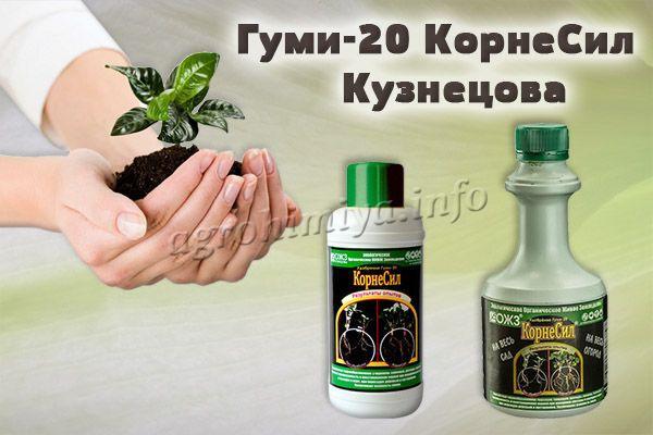 Фото удобрения Гуми-20 КорнеСил Кузнецова