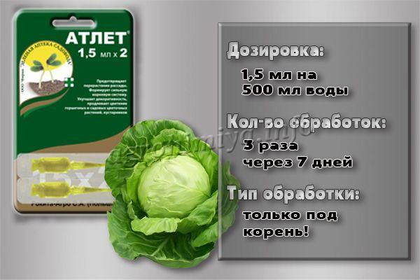 Инструкция по применению препарата Атлет для капусты
