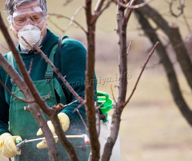 Меры предосторожности при работе с удобрением