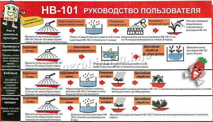 Натуральное удобрение НВ 101 имеет комплексное действие
