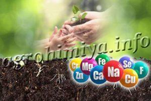 Органоминеральные удобрения