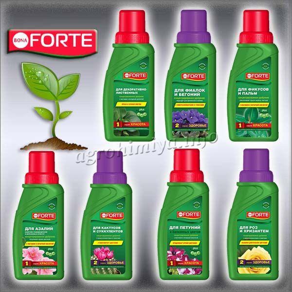 Удобрение Бона Форте для декоративных растений