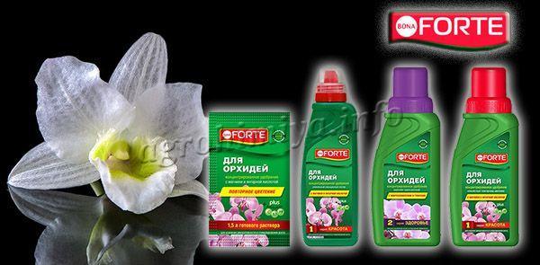 Удобрение Bona Forte для орхидей