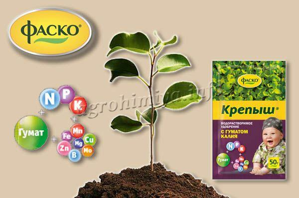 Удобрение водорастворимое органоминеральное с гуматом калия ФАСКО® «Крепыш»