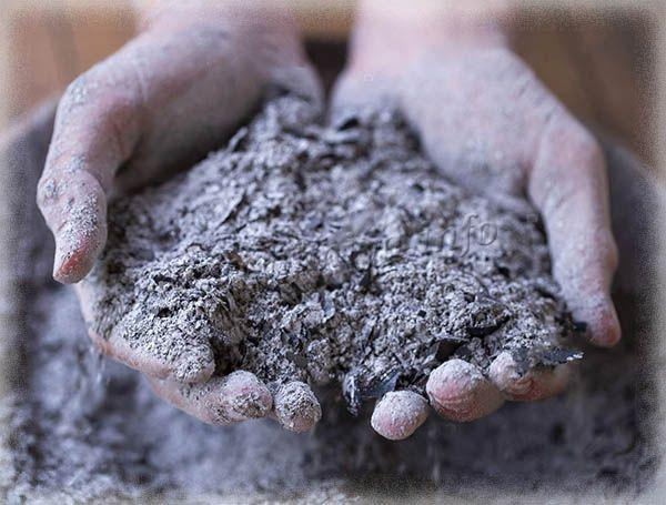 Древесная зола может использоваться сухой или как раствор