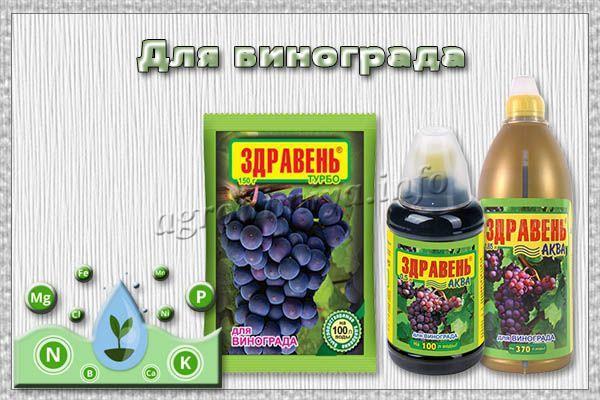 Фото удобрения Здравень для винограда