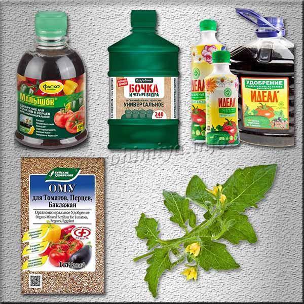 Средства, в которых питательные вещества находятся в легкоусвояемой форме