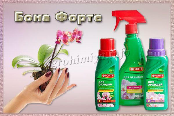 Удобрение Бона Форте для орхидей