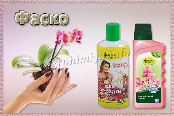 Удобрение Фаско для орхидей