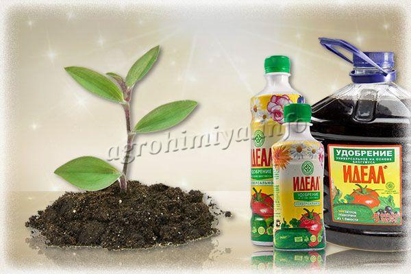 Удобрение Идеал рекомендуется для рассады