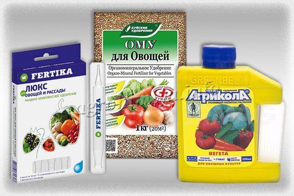 Удобрения для чеснока, которые помогут избежать пожелтения