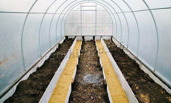Вырастить вкусные помидоры в теплице можно только в хорошо удобренной земле