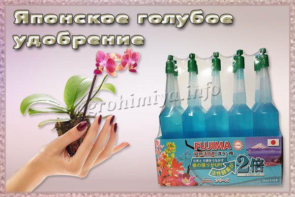 Японское голубое удобрение для орхидей