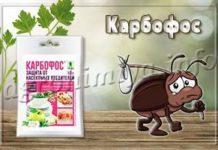 Инсектицид Карбофос