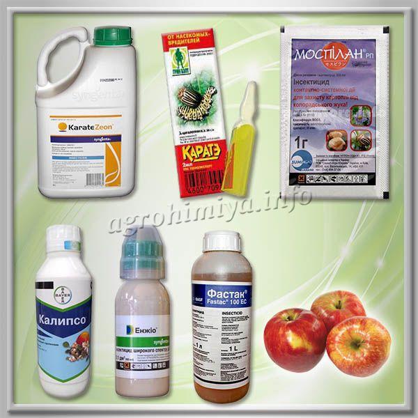 Инсектициды для обработки яблони от тли