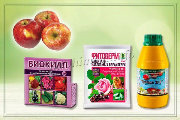Лучшие биопрепараты для уничтожения тли на яблоне