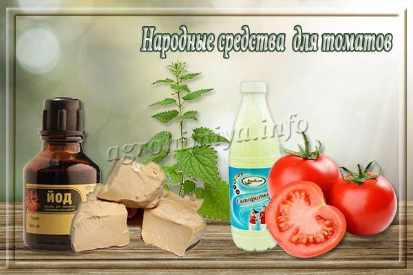 Народные средства для удобрения томатов