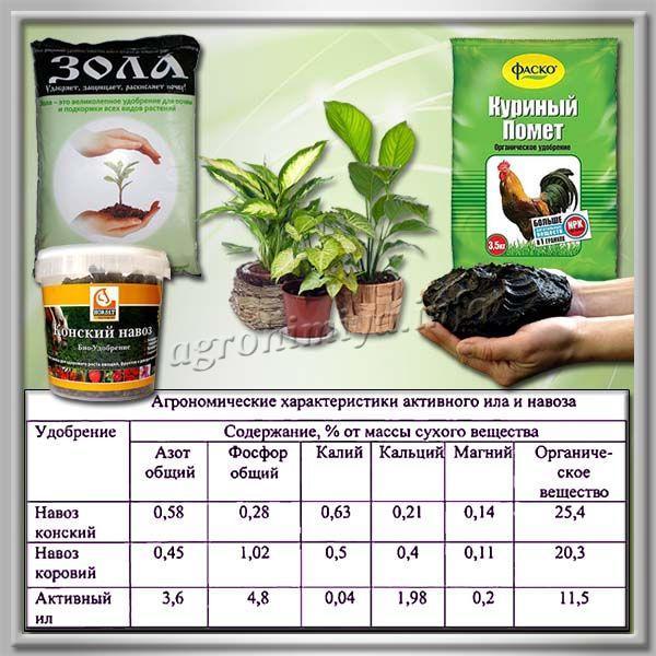 Органические удобрения для цветов