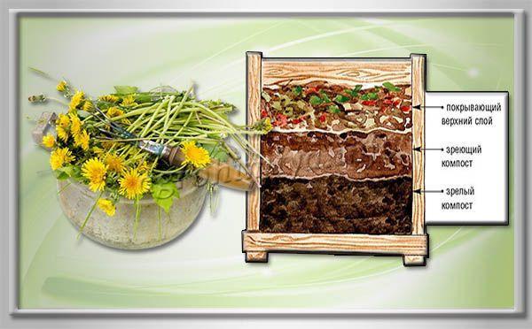 Удобрение из травы можно делать не только жидкое, но и в виде компоста, перегноя