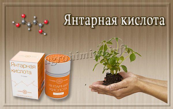 Янтарная кислота повышается иммунитет, растения меньше страдают от вредителей и реже болеют