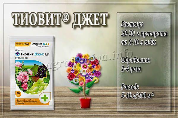 Инструкция по применению Тиовит Джета для цветов