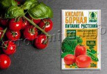 Борная кислота для помидор